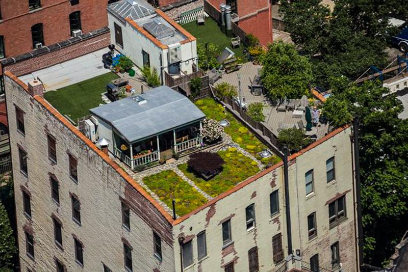4_RooftopMeadow
